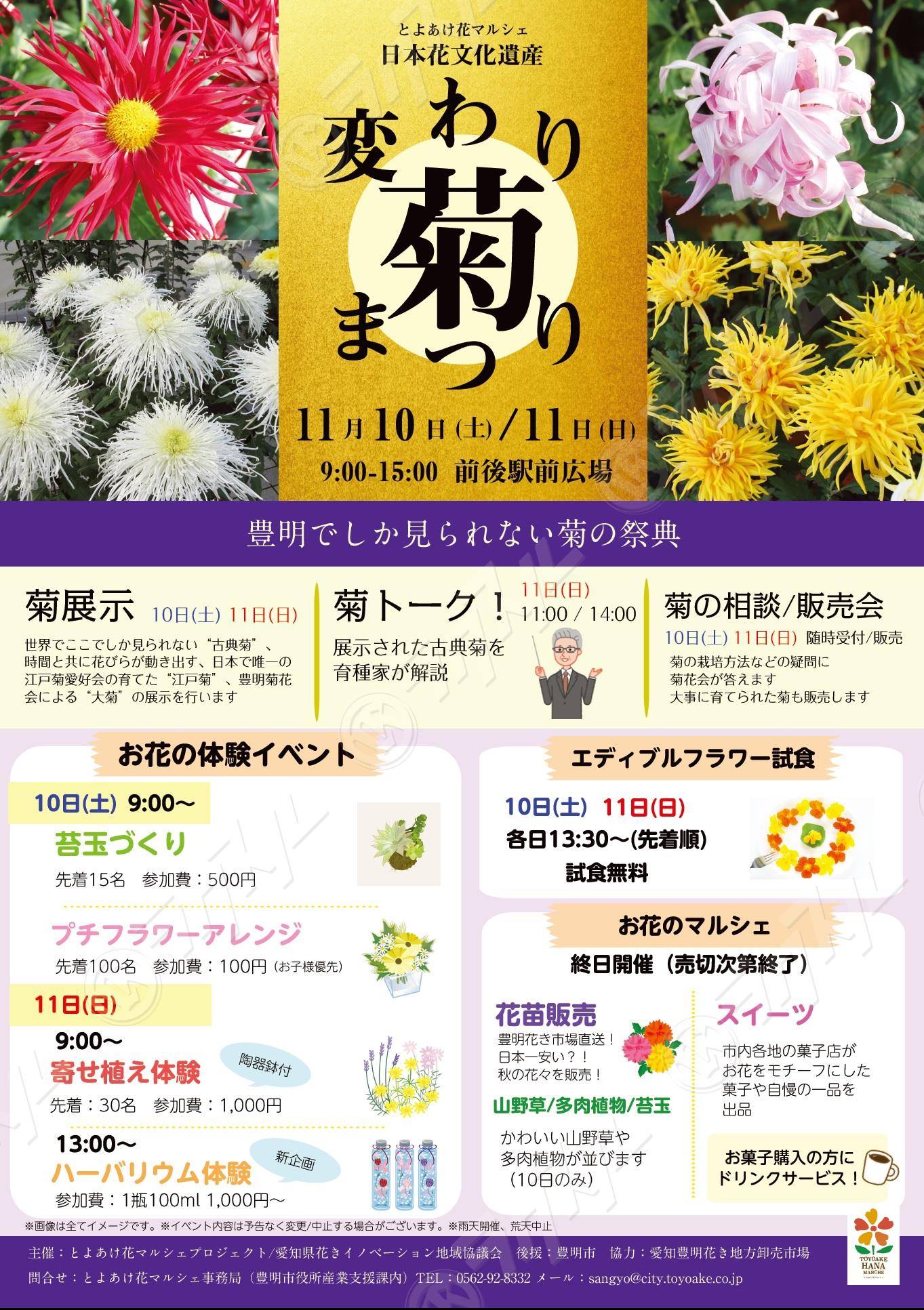 変わり菊チラシ最終JPEG.jpg