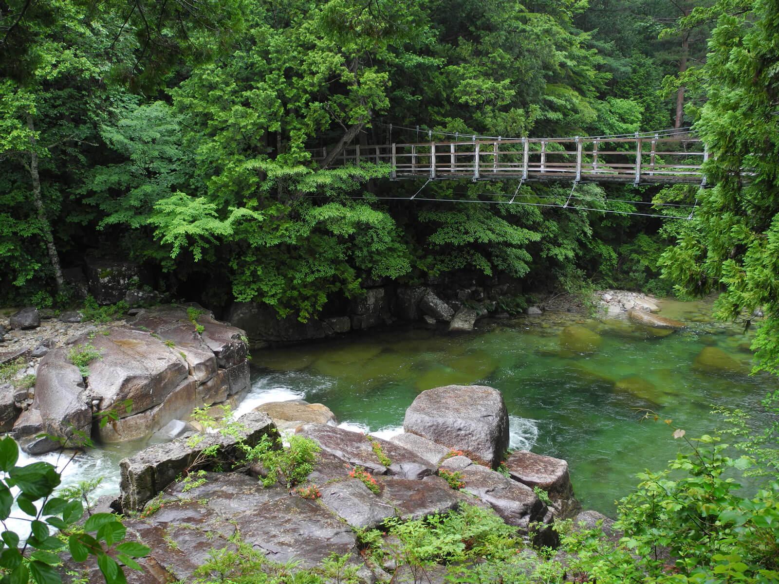赤沢自然休養林 吊り橋が架かる渓谷