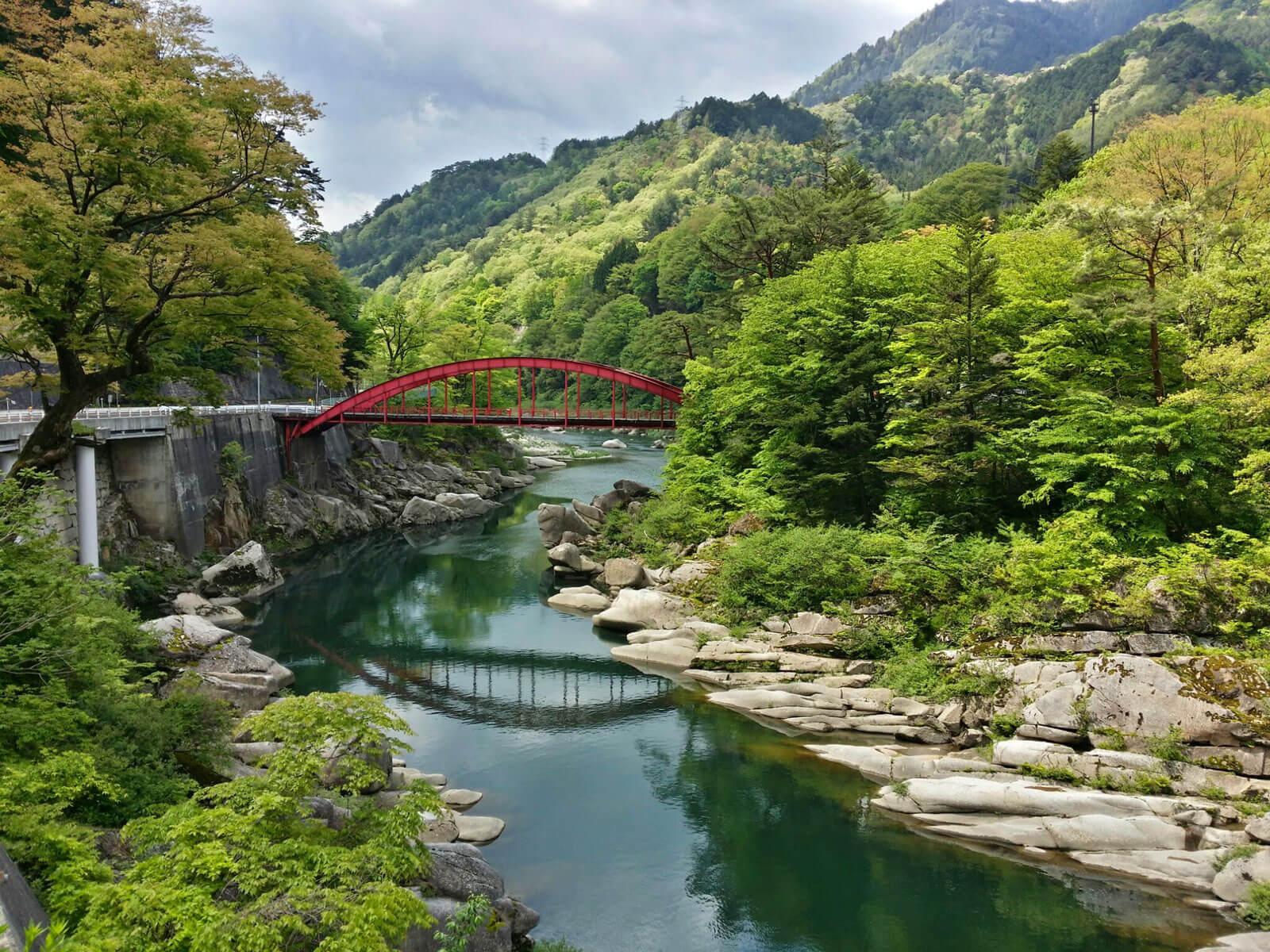 赤沢自然休養林 渓谷